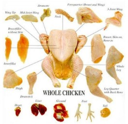 Production poulet export chine Asie et Chine